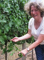 Marion Smith with her beloved organic Sauvignon blanc vines