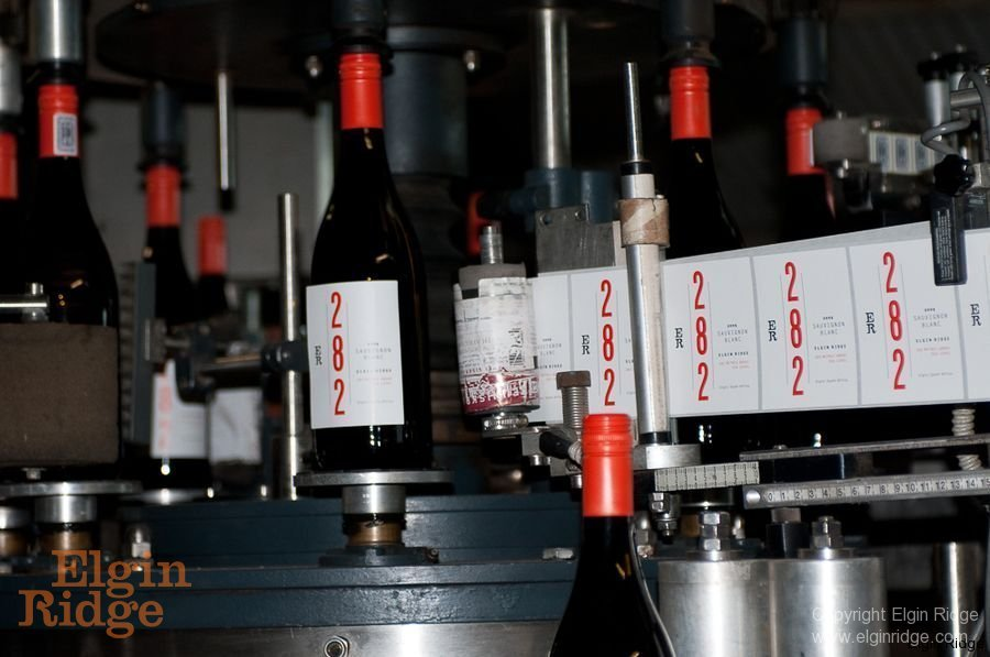 Labeling 282 wine bottles